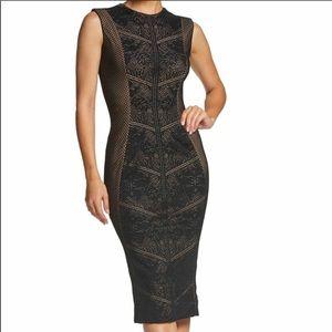 Dress the population Ashton lace dress